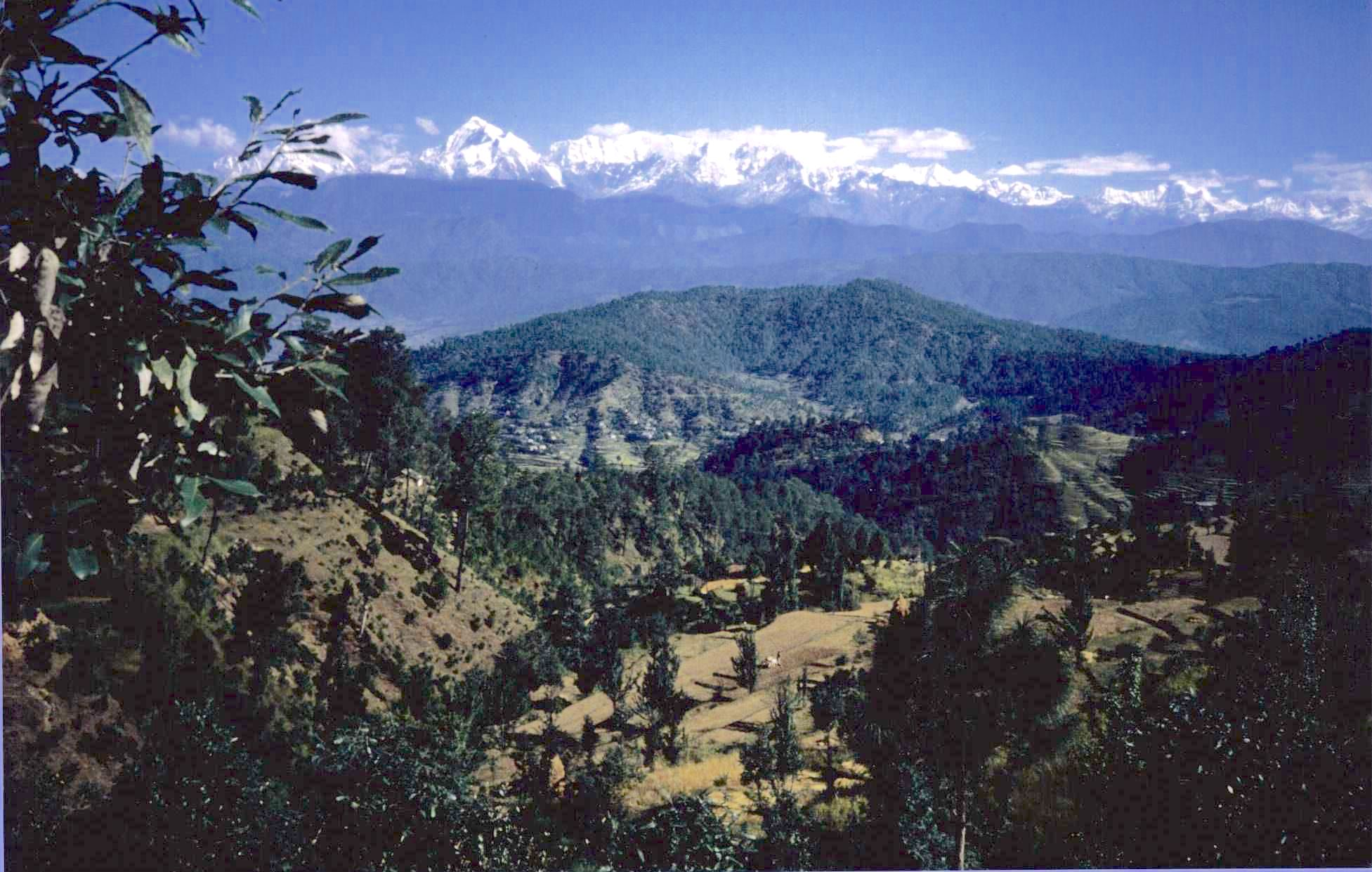 The Himalayas seen from the valley